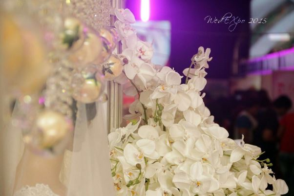 Wed Expo Port Harcourt LoveweddingsNG1