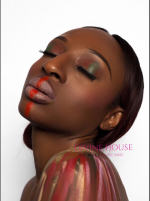 Divine House of Makeup (DHM)